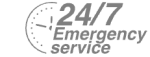 24/7 Emergency Service Pest Control in Bushey, Bushey Heath, WD23. Call Now! 020 8166 9746